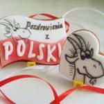 lukrowane ciasteczka na zamówienie, pierniczki Koziołek Matołek- Basia sweets