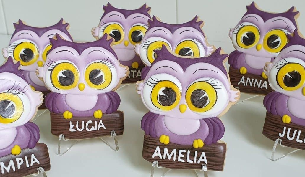 Podziękowania dla nauczycieli - Sowa z dedykacją, Lukrowane ciasteczka dla dziewczynek, Pierniczki na Dzień Kobiet, upominki dla dzieci Basia sweets