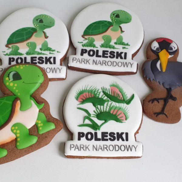 Pierniki reklamowe, pierniki pamiątkowe, Pamiątkowe pierniki, Poleski Park Narodowy, Urszulin, lukrowane pierniki Park Poleski - Basia sweets